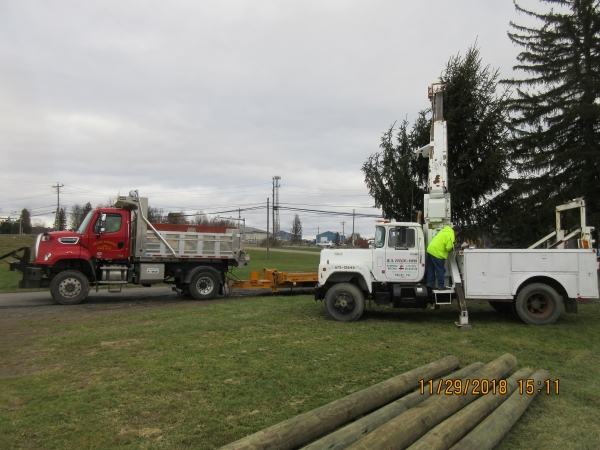 2018 Tree delivery2